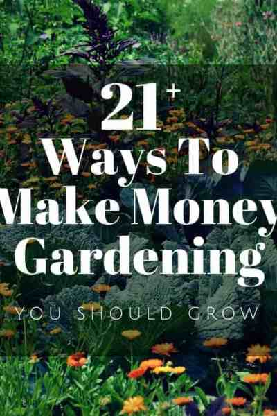 How to make money gardening. Over 20 ideas for making money from home gardening.