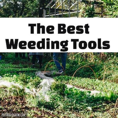 The Best Long Handled Weeding Tools
