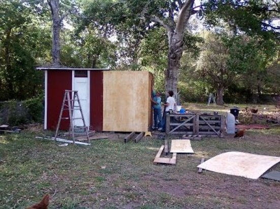 adding a section to expand the chicken coop
