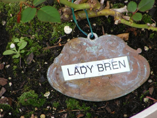 copper garden marker with label