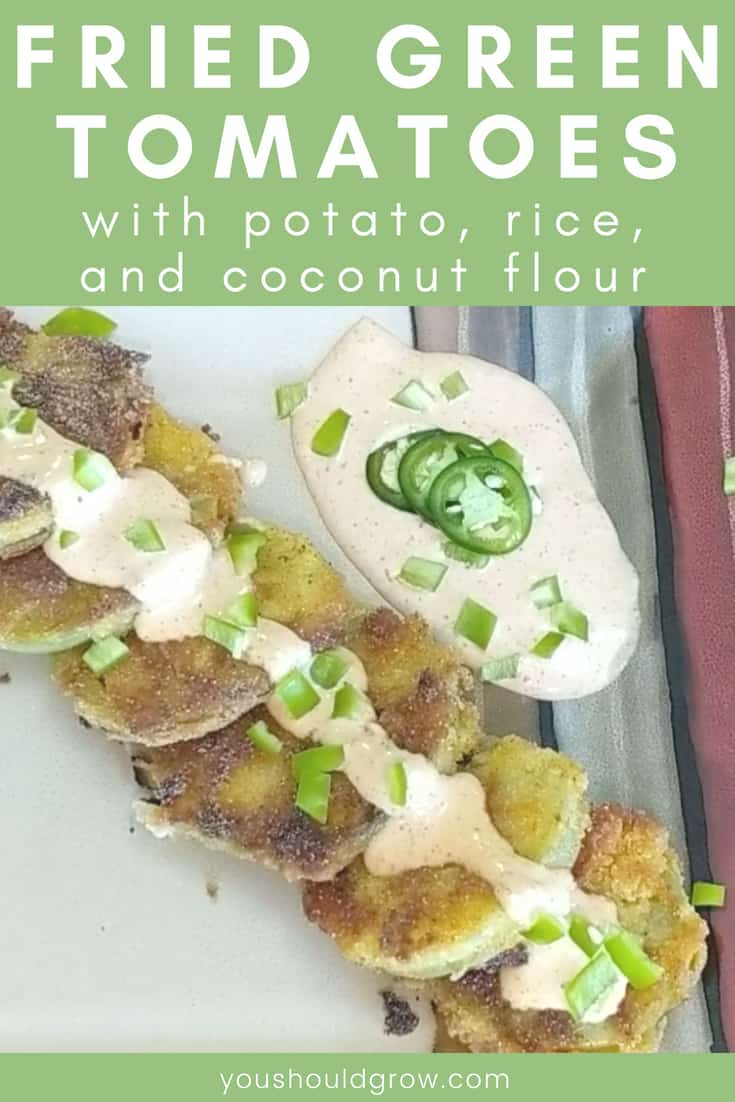 fried green tomatoes with potato rice and coconut flour