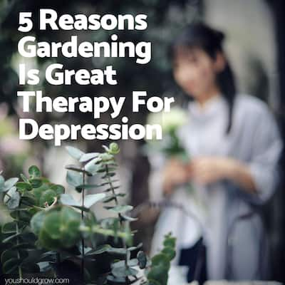 Horticultural Therapy: 5 Reasons Playing In The Dirt Makes You Happy