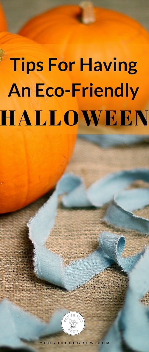 Worried about the effects all the Halloween festivities have on the environment? You can have an eco-friendly Halloween and still have fun! Get tips for staying eco-friendly this Halloween at YouShouldGrow.com