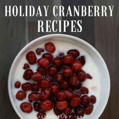Tasty & Tempting Holiday Cranberry Recipes