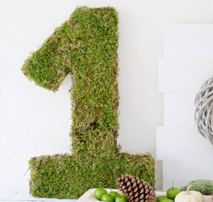 DIY moss decor ideas: Moss covere number 1