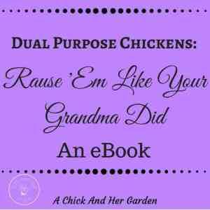 Book Review: 'Dual Purpose Chickens: Raise 'Em Like Your Grandma Did'