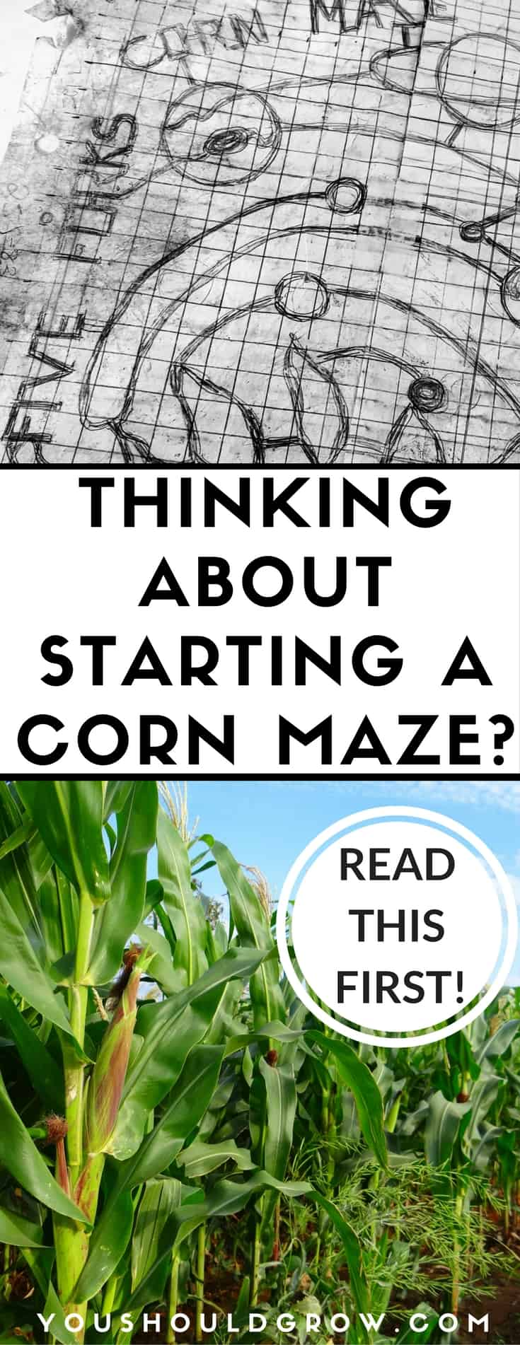 Are you thinking about starting a corn maze on your family farm? You need to read this first! Find out one family's tips for starting your first corn maze.