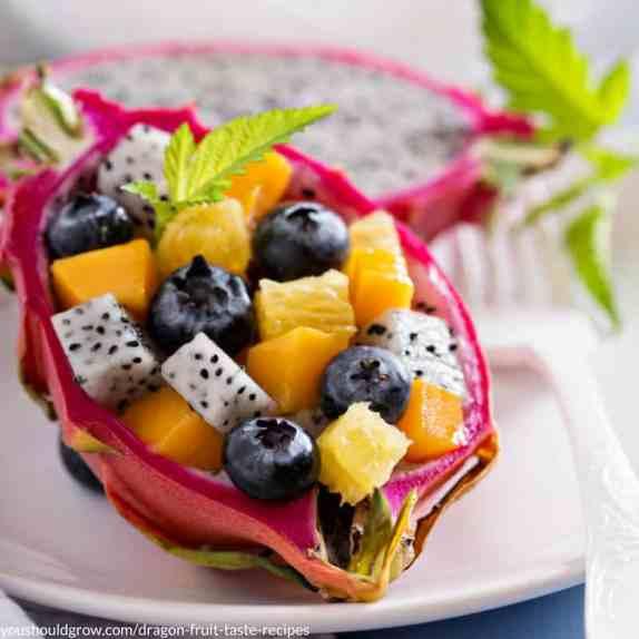Oranges, papaya, blueberries, and dragon fruit make a fresh fruit salad in a dragon fruit bowl.