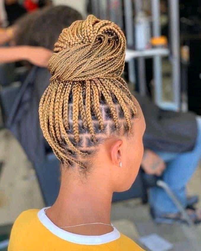 ponytail knotless braids
