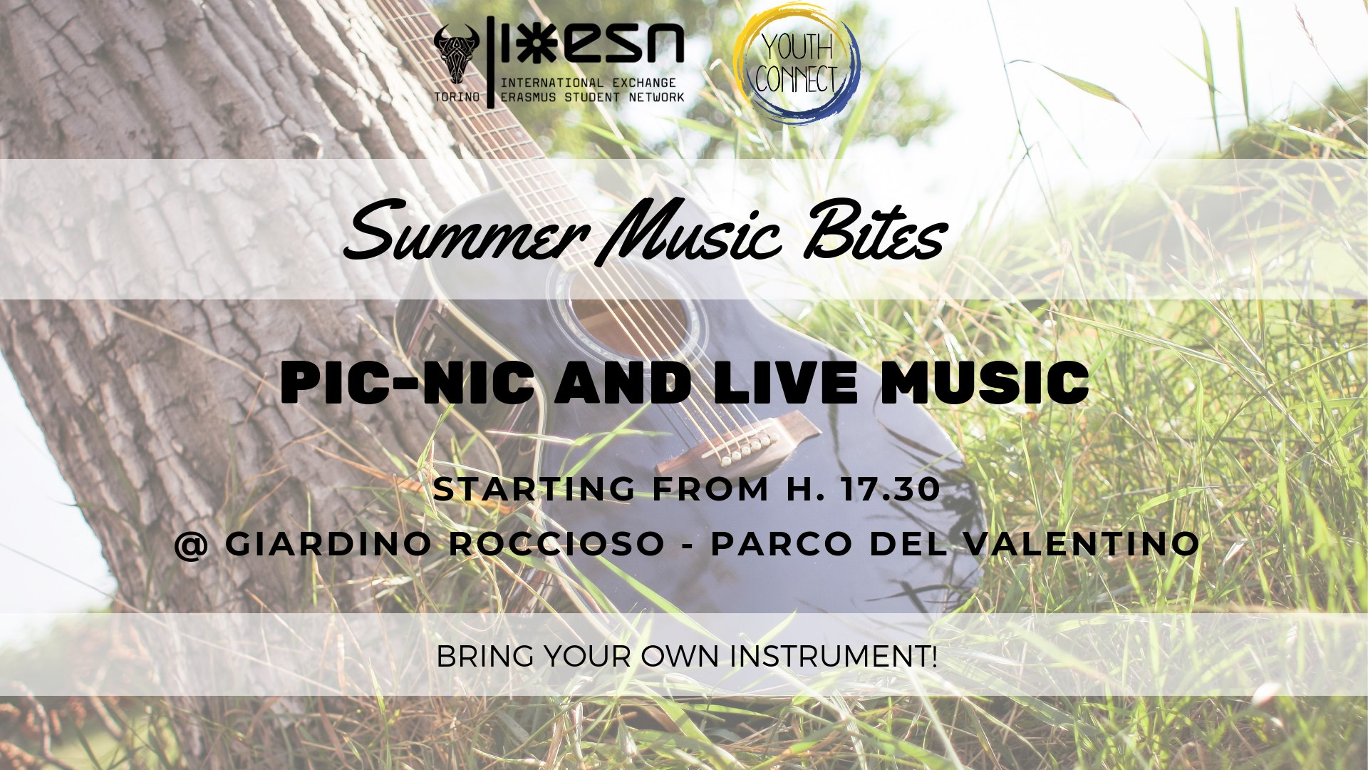 Summer Music Bites