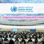 UN-OHCHR Indigenous Fellowship Program 2018 in Switzerland