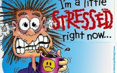 Tips on How to Conquer Exam Stress