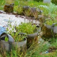 center plants