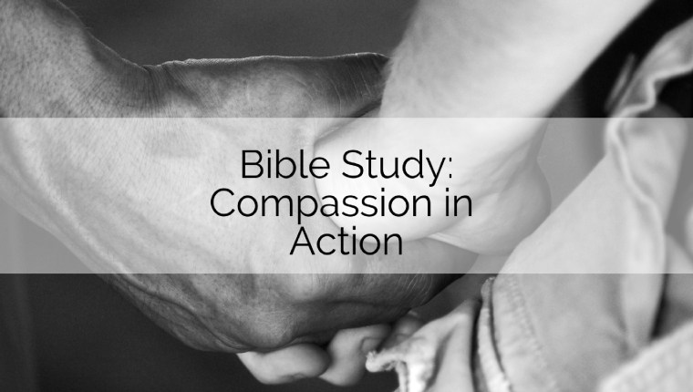 Bible Study Compassion