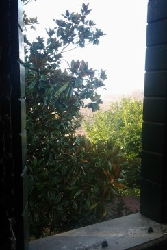 07-window-view-out