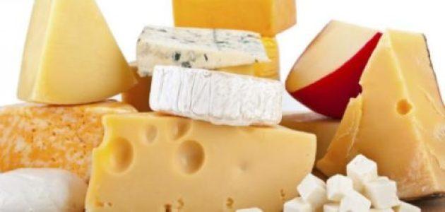 الجبن