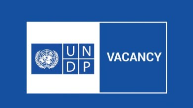 Photo of DGU INTERNSHIP:UNDP
