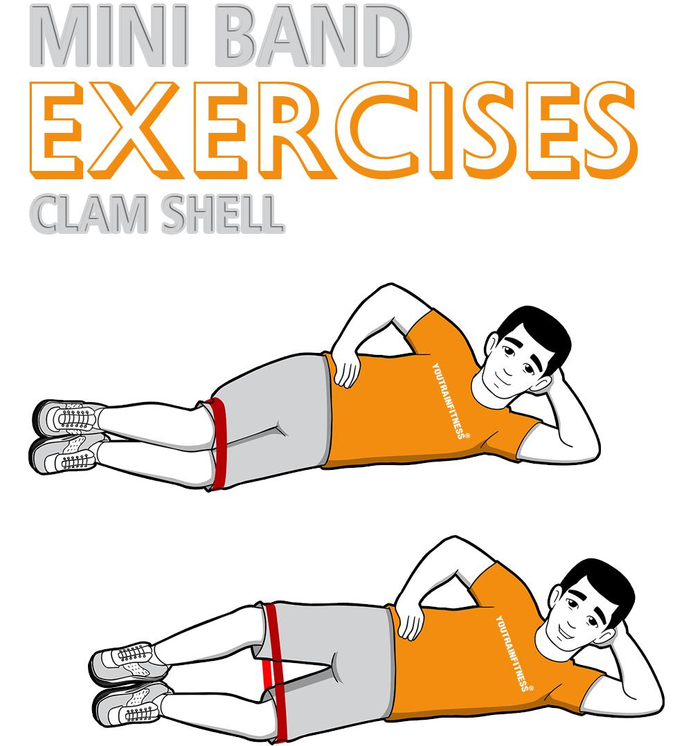Mini Band Clam Shell