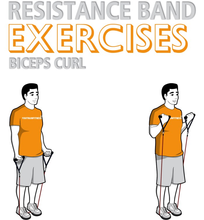 Resistance Band Biceps Curl