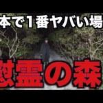 [はじめしゃちょー]日本で1番ヤバい心霊スポット。慰霊の森に行きました。