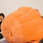 [水溜りボンド]【髙地くん?】1つ50万円の世界最大のカボチャがエグすぎたwwww