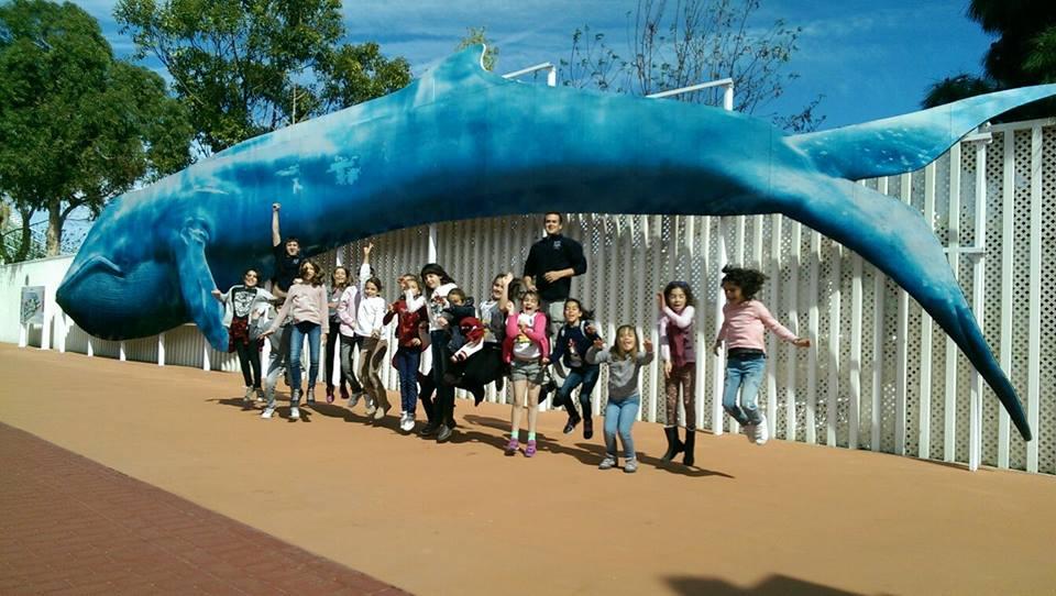 Un parque infantil lleno de vida marina en plena valencia for Oceanografic valencia precio 2016