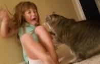 Çocuklar ve Hayvanlar Videosu Zamanı