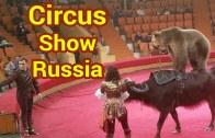 Rusya'da Yapılmış Olan Mükemmel Sirk Şovu Karşınızda!
