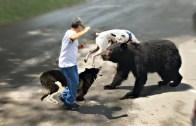 Sizi Ayıdan Bile Koruyabilecek Efsane Köpek Türleri