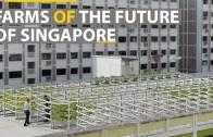 Singapur'dan Büyük Adım – Yüksek Teknolojili Çiftlikler