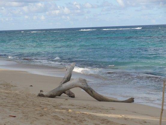 Une partie du Parc National d'Humboldt à Cuba se trouve sur la côte maritime photo blog voyage tour du monde https://yoytourdumonde.fr