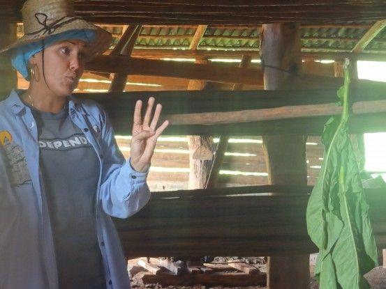 Une femme vivant à Vinales nous explique la production de tabac à Cuba, photo blog voyage tour du monde https://yoytourdumonde.fr
