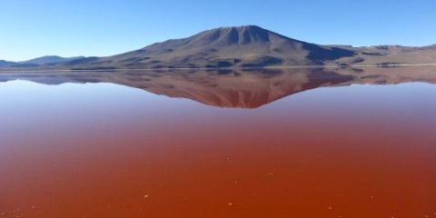 bolivie-sud-lipez-laguna-colorada-voayge
