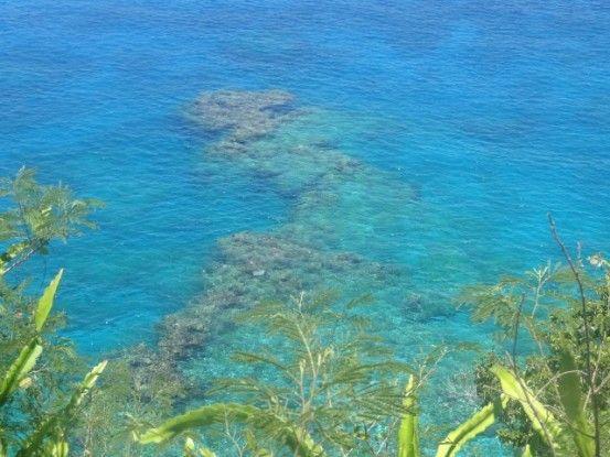 ile-lifou-coraux