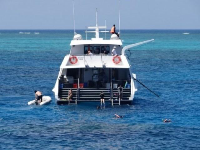 Australie- Cairns: Maintenant apres avoir visite la ville, je pars decouvrir 3 jours et 2 jours la Grande Barriere de Corail... A+