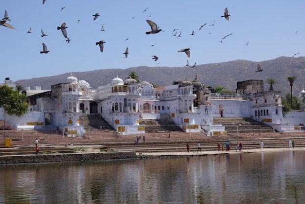 Pushkar dans le rajasthan en inde est une ville sainte avec de nombreux pelerinage. Brahma a fait tomber un lotus sur cette ville photo ghats pushkar blog voyage tour du monde https://yoytourdumonde.fr