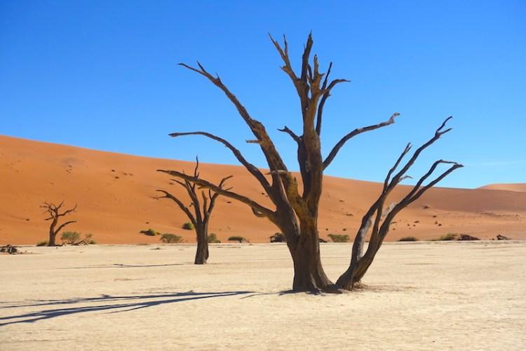 Déserr de Namibie Deadvlei photo blog voyage tour du monde travel https://yoytourdumonde.fr