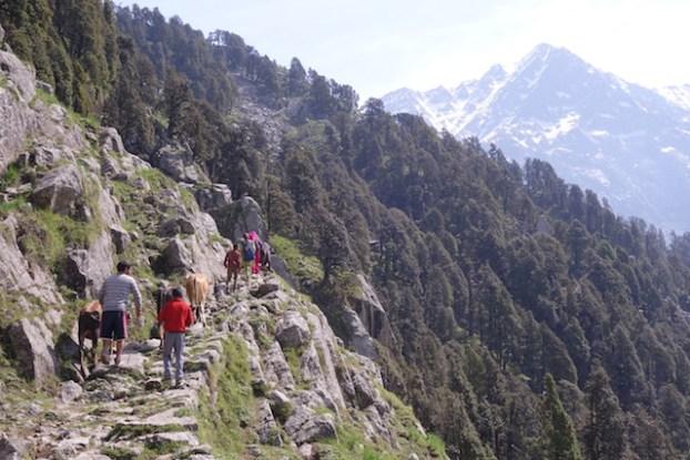Les montagnes qui encerclent Triund Hill sont magnifiques des treks pres de Dharamsala n'attendent plus que vous! Inde photo voyage blog tour du monde https://yoytourdumonde.fr