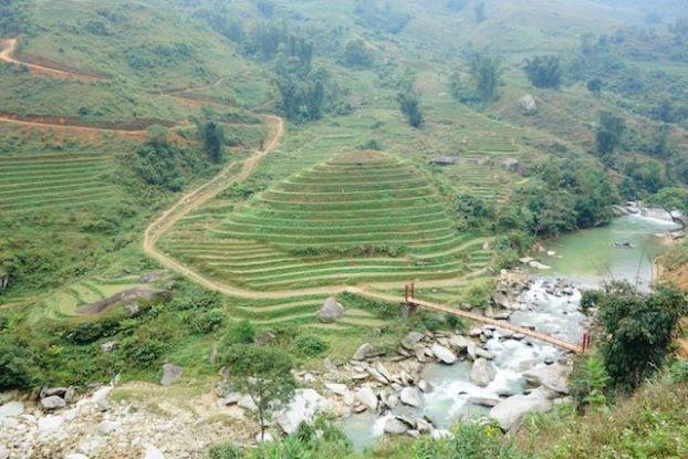Les terrasses en rizièeres de Sapa sont des renommées internationales.