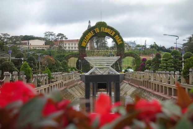 Vietnam - Dalat: Non loin du centre ville vous pouvez visiter le Park Flowers.