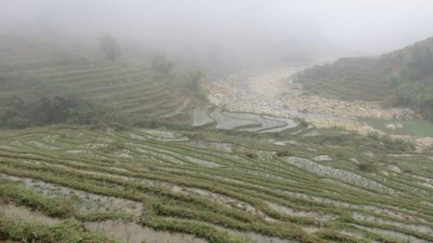 Sapa rizieres terrasse photo blog tour du monde https://yoytourdumonde.fr