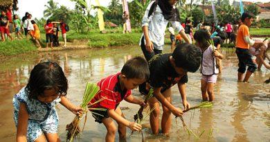 Peningkatan Minat Bertani Pada Anak dan Remaja