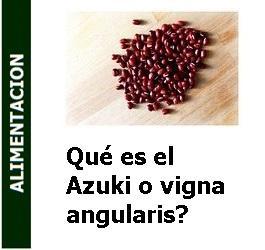 Qué es el Azuki o vigna angularis?
