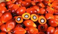 alimentacin--20-alimentos-que-contienen-aceite-de-palma