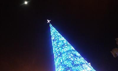 luces-de-navidad-qu-hacer-esta-navidad