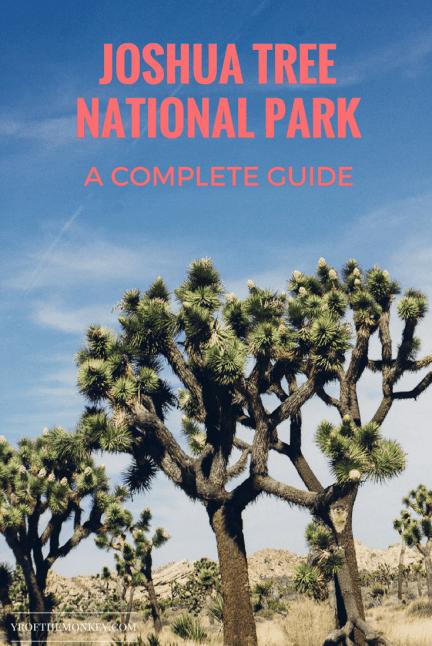 Joshua tree national park travel palm springs California