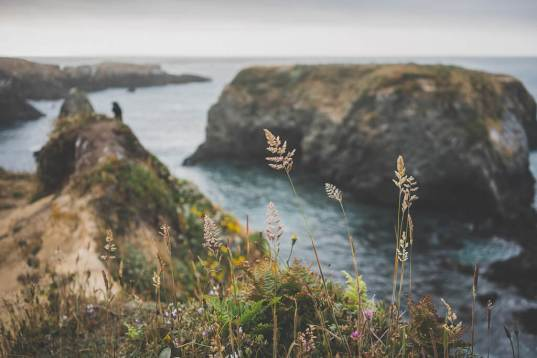 a dog friendly guide to Mendocino, what to do with your dog in Mendocino, dog friendly activities in Mendocino