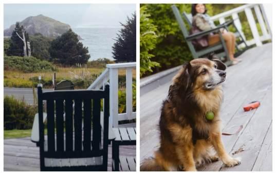 dog friendly Mendocino, Little River Inn
