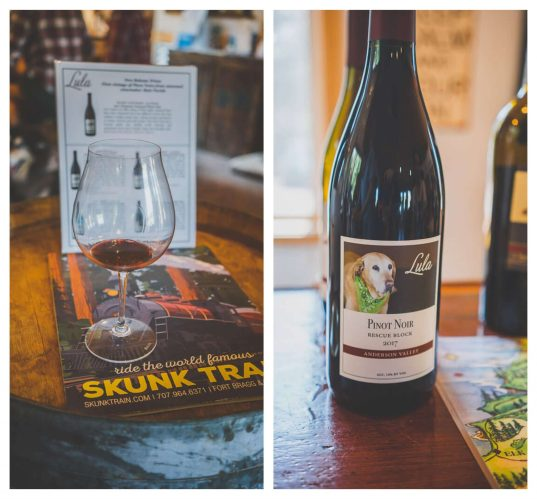 dog friendly wineries in Mendocino, where to take your dog in Mendocino, dog friendly Mendocino