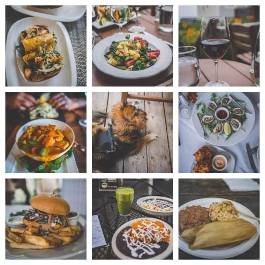 dog friendly restaurants in Mendocino, pet friendly restaurants and cafes in Mendocino